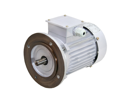 Three Phase Electric Motor Manufacturer Supplier Exporter